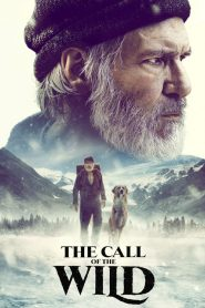 The Call of the Wild 2020 720p – 1080p WEBRip [MEGA]