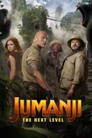 Jumanji: The Next Level 2019 720p – 1080p BluRay [MEGA]